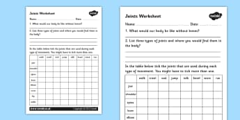 Joints Worksheet - joints, the human body, movement, muscles, tendons, how the body works, bones, how our bodies move, ks2 science worksheet, ks2 biology