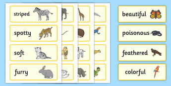 US Animal Adjectives Word Cards  - Animal Adjectives Word Cards - animal, adjective, movement, words, adjectves, adejctives, adjetives,