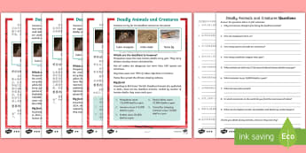 Deadly Animals and Creatures Differentiated Reading Comprehension Activity English/Mandarin Chinese - deadly, animals, creatures, KS1 reading, non-fiction, information, comprehension, questions, fact fi