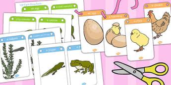 Life Story Threading Card Set - thread, cards, stories, activity