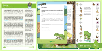 Spring Topic Hook Wow Ideas and Resource Pack - Wow Activity, Topic Starter, Springtime, Seasons, Weather, Plants and Growth, Flowers, Frog Life Cyc