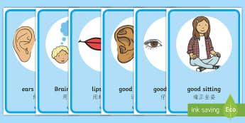 Good Listening Poster English/Mandarin Chinese - POSTER,DISPLAY, LISTENING, SITTING,EAL