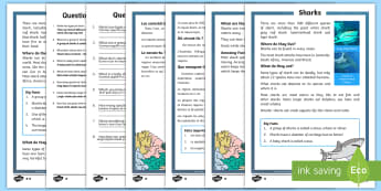 Sharks Differentiated Reading Comprehension Activity English/French - Sharks, sea creatures, KS1 reading, non-fiction, information, comprehension, questions, fact file, E