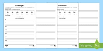 Homonyms Double Meanings Activity Sheet English/Afrikaans - literacy, write, writing, holiday, summer, geletterdheid, skryf, EAL, worksheet