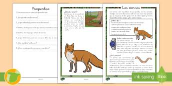 Comprensión lectora: Los zorros - animales, mamíferos, lectura, leer, escritura, escribir, comprensión, zorro, zorros, cánidos, can