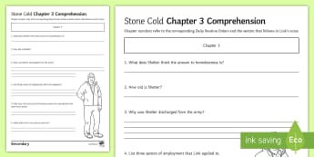 'Stone Cold' Chapter 3 Comprehension Activity Sheet - Swindells, Comprehension, Shelter, Link, Assess