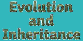 Evolution and Inheritance Display Lettering - Science lettering, Science display, Science display lettering, evolution, inheritance