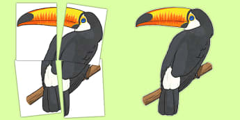 Large Toucan Display Cut Out - large, toucan, display, cut out, rainforest