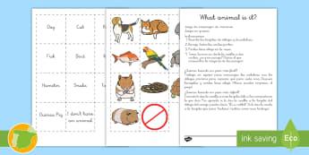 A1 Juego de cartas: Mascotas en inglés - animals, animales, cards, tarjetas, game,lengua extranjera,Spanish-translation