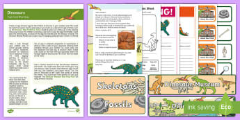 Dinosaurs Topic Hook Wow Ideas and Resource Pack - topic hook, wow lesson, wow session, topic starter, dinosaurs, class activity, observation lesson, l