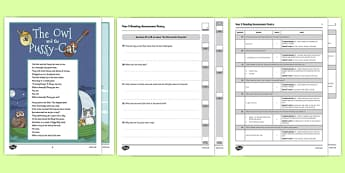 Year 3 Reading Assessment Poetry Term 3 - sats, summative, diagnostic, practice, sample