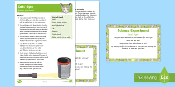 EYFS Cats' Eyes Science Experiment and Prompt Card Pack - EYFS Pets, Animals, National Pet Month, cats, nocturnal, foxes, deer, reflection, light, light and d