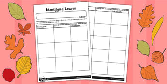 Identifying Leaves Worksheet - identifying, leaves, worksheet