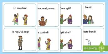 Ghid de conversație ilustrat Cartonașe - dezvoltare personală, comunicare orală, comportament social, română, jocuri,Romanian