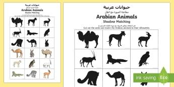 Arabian Animals Silhouette Matching Cards Arabic/English  - Science: Living World, camel, oryx, Arabian, animal, falcon, saluki, leopard, hare, lizard, gazelle,