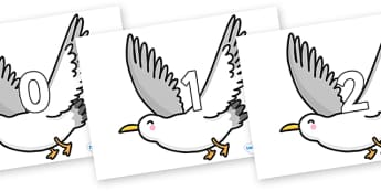 Numbers 0-50 on Seagulls - 0-50, foundation stage numeracy, Number recognition, Number flashcards, counting, number frieze, Display numbers, number posters