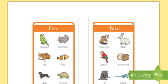Pets Words Tolsby Prompt Frame  - pets, writing frame, tolsby, vocabulary