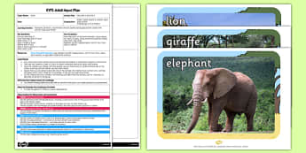 Safari Describe it and Find it EYFS Adult Input Plan