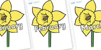 Months of the Year on Daffodils - Months of the Year, Months poster, Months display, display, poster, frieze, Months, month, January, February, March, April, May, June, July, August, September