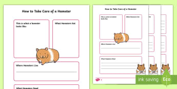 How to Take Care of a Hamster Fact File - Pets, pet, EYFS, KS1, take, care, look, after, family, member, members, vet, vet surgery, surgery, i