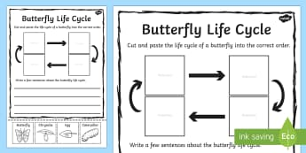 Butterfly Life Cycle Sentence Writing Activity Sheet - writing, worksheet