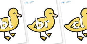Initial Letter Blends on Ducklings - Initial Letters, initial letter, letter blend, letter blends, consonant, consonants, digraph, trigraph, literacy, alphabet, letters, foundation stage literacy