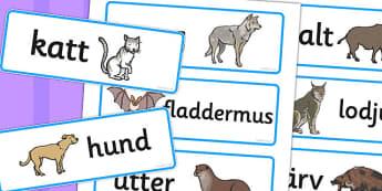 Swedish Animals Word Cards - swedish, animals, word cards, cards