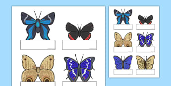 Editable Self Registration Cards Butterfly - editable, self-registration, cards, butterfly, minibeast