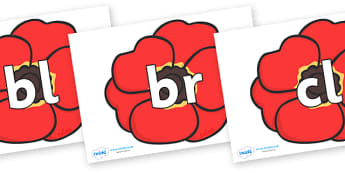 Initial Letter Blends on Poppies - Initial Letters, initial letter, letter blend, letter blends, consonant, consonants, digraph, trigraph, literacy, alphabet, letters, foundation stage literacy