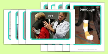 Vet's Surgery Display Photos - Vets, vet, photo, display Photos, display, photos, Vet Surgery, pets, pet, role play, vets role play, vet, operation, xray, nurse, medicine, vaccine, bandage, cat, dog, rabbit
