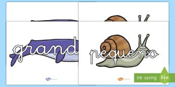 Pósters DIN A4: Vocabulario en ballenas y caracoles - Tamaño - vocabulario, tamaño, medida, mural, exponer, exposición, decorar, decoración, ballena, caracol, g