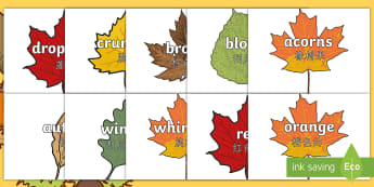 Autumn Topic Words on Leaves Display Poster English/Mandarin Chinese - Autumn topic words on leaves, Word cards, Autumn, seasons,  A4, display, autumn pictures, autumn dis