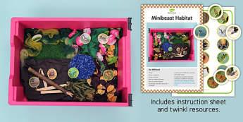 Minibeasts Sensory Tray Printable Resource Pack - sensory tray