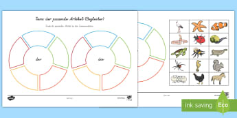 Tiere und ihre Artikel Puzzle - Sommer, Tiere, Artikel, Grammatik, Deutsch, Kl.1/2, summer, animals, article, grammar, German, EYFS/