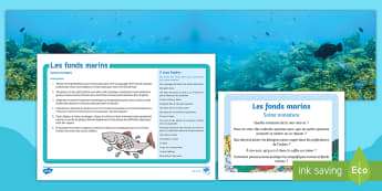 Pack de ressources : Scène miniature - Les fonds marins-French - KS1, cycle 2, cycle 1, fonds marins, mer, océan, poissons, coquillages, scène, jeu, ,French