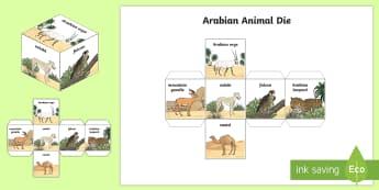 Arabian Animals Dice Nets - Science, UAE, animals, living, world, Arabian, leopard, camel, falcon, oryx, saluki, lizard, sand, m