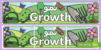 Growth Display Banner Arabic - Arabic/English  - display banner, growth, plants, living things, EAL, Arabic.,Arabic-translation