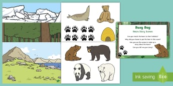 Bears Story Scenes  Busy Bag Prompt Card and Resource Pack - Bear, Polar Bear, Brown Bear, Grizzly Bear, Animals, story telling, literacy, Science
