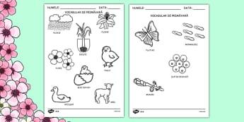 Primăvara - Fișe de colorat - primăvara, decor, planșe, fișe de colorat, fișe de lucru, cuvinte, planșe, cuvinte, anotimpuri, anotimp, materiale didactice, română, romana, material, material