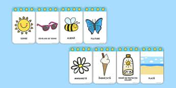 Vara - Cartonașe cu vocabular - vara, cartonașe, vocabular, cuvinte, planșă, materiale didactice, română, romana, material, material