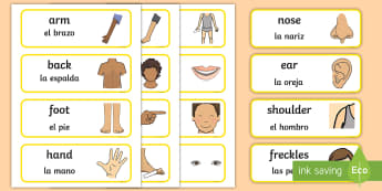 * NEW * Parts of the Body Topic Word Cards - English / Spanish - EAL, Parts of the Body Topic Word Cards, body parts, my body, nose, eyes, ears, mouth, arm, leg, fin