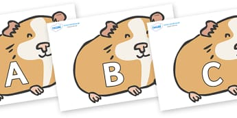 A-Z Alphabet on Guinea Pigs - A-Z, A4, display, Alphabet frieze, Display letters, Letter posters, A-Z letters, Alphabet flashcards