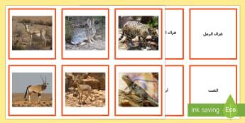 بطاقات مطابقة أسماء وصور حيوانات عربية - العلوم، علوم، عربي، حيوانات، حيوانات عربية، بطاقات مط