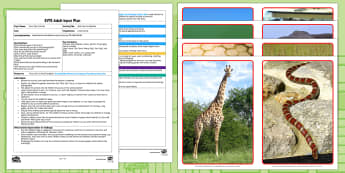 EYFS Walk Like an Elephant Adult Input Plan and Resource Pack - Dear Zoo, Rod Campbell, animals, letter to the zoo, walk, crawl, slither, jump, swing, forwards, bac