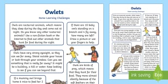 Owlets Home Learning Challenges Reception FS2 - EYFS Owlets, Owl Babies, Martin Waddell, owls, nocturnal