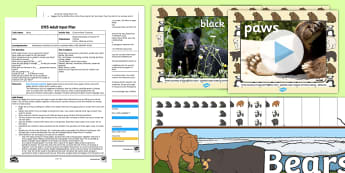 EYFS Creative Bear Creations Adult Input Plan and Resource Pack - Bears, Expressive Arts and Design, Art, Craft, Design, Create, Manipulate, Materials, Media, Materia