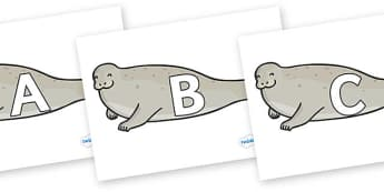 A-Z Alphabet on Seals - A-Z, A4, display, Alphabet frieze, Display letters, Letter posters, A-Z letters, Alphabet flashcards