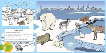 Presentación: Los animales del Ártico - invierno, foca, morsa, zorro, liebre, oso polar, fauna, nieve, hielo, primaria, recursos, materiales