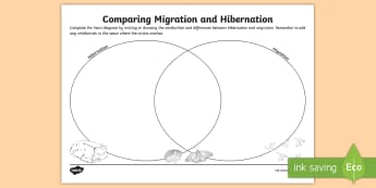 Migration and Hibernation Venn Diagram Activity Sheet - ACSSU043, ACSSU094, adapt, adaptation, migrate, worksheet, torpor, behavioural adaptation,Australia