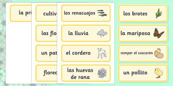 Tarjetas de vocabulario La primavera - tarjetas, vocabulario, primavera